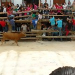 Castril Spain - Running of the bulls. Off the beaten path driving in Spain. Read more on WagonersAbroad.com
