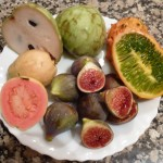 Food in Almuñécar - Local Fruit