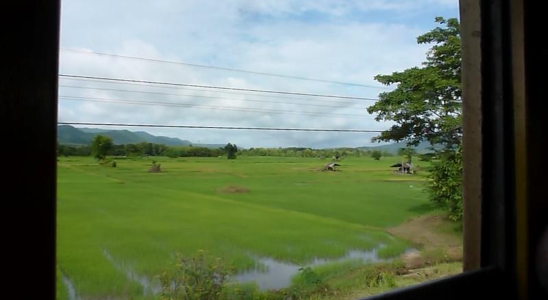 Train Bangkok to Chiang Mai rice fields