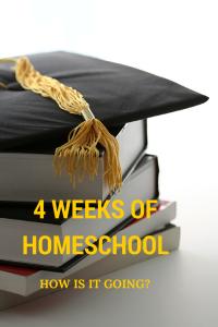 4 weeks of Homeschool - How is it going
