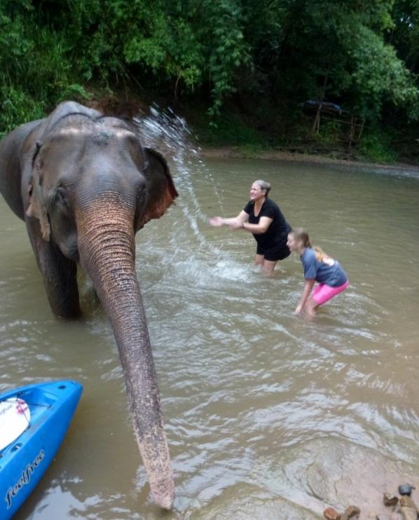 Chai Lai Orchid Eco Resort bathing elephants