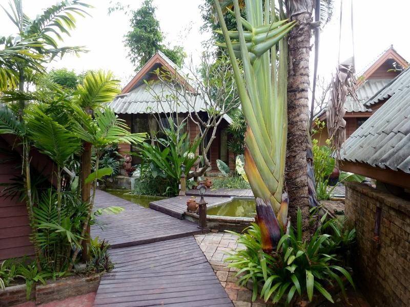 Pai Vintage Garden Resort - garden and coi pond
