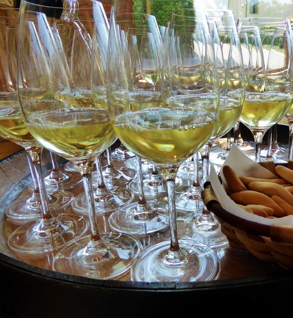 Wine tasting at Marques de Riscal La Rioja Spain
