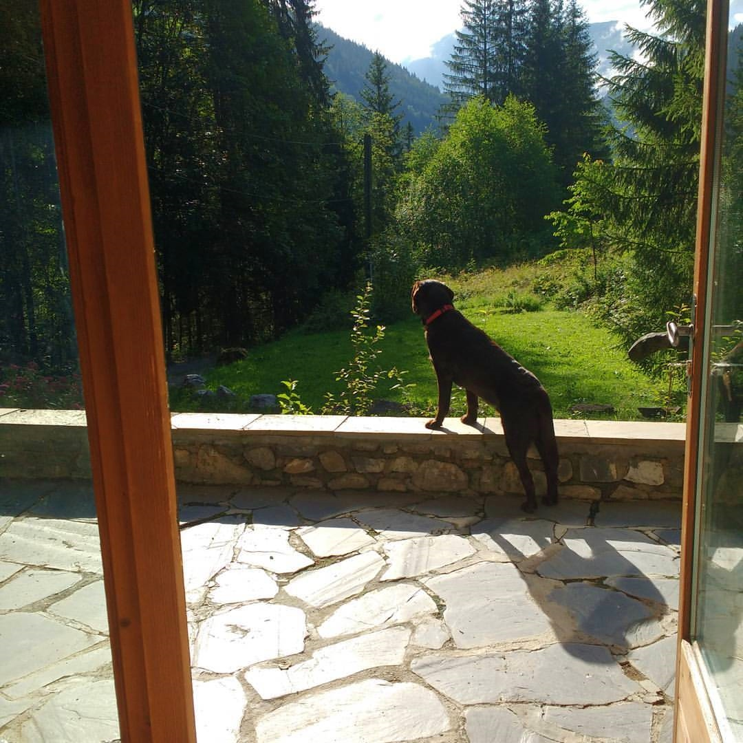 Morzine housesit front porch with the alps and Rolo