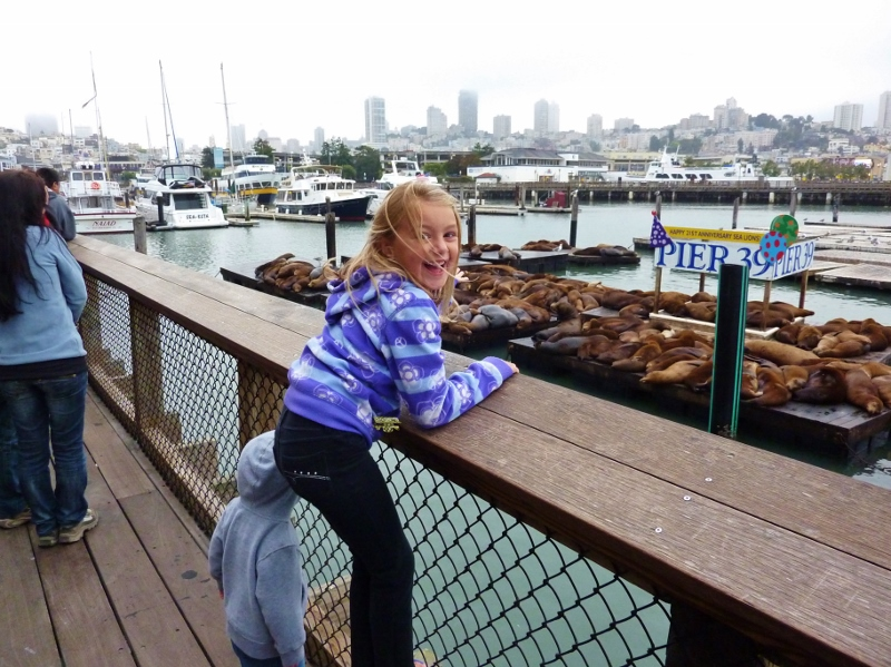 San Francisco with family August 2011 pier 39 seals